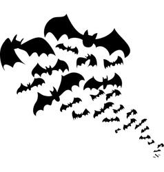 Bats flock vector