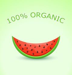 Organic Watermelon Slice vector image vector image
