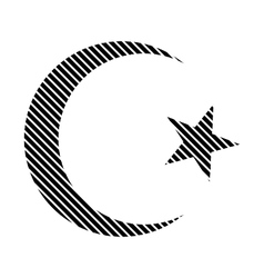 Star and crescent sign vector image