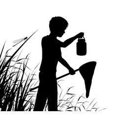 young naturalist vector image