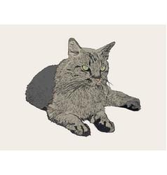 Sitting cat hand draw sketch vector