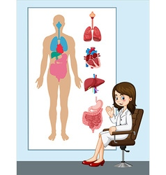 Doctor and anatomy chart vector