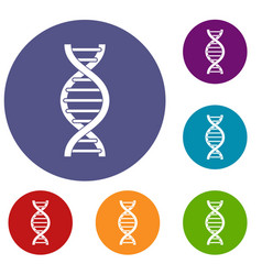 Dna spiral icons set vector