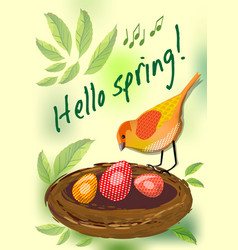 Hello spring cute card with colorful bird by nest vector