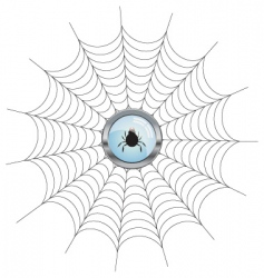net with spider icon vector image vector image