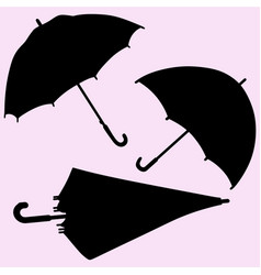 Umbrella silhouette isolated vector