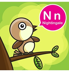 N nightingale color cartoon and alphabet for vector