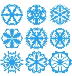 Set of snowflakes on a white background vector image