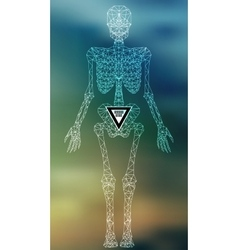 Abstract polygonal skeleton vector image vector image