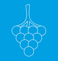 Branch of grape icon outline style vector