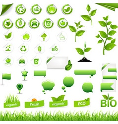 Collection Of Eco Elements vector image vector image