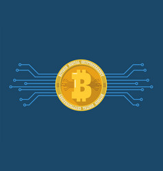 Bitcoin digital cryptocurrency vector