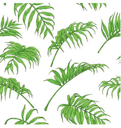 Hand drawn palm fronds pattern vector