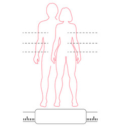 man woman outline silhouettes pointers and scale vector image