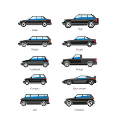 Car or automobile body type names flat vector