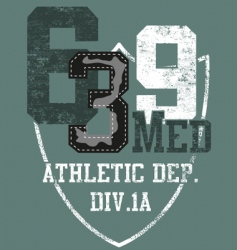 Grunge athletic sports print vector