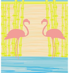 bamboo background with flamingo vector image