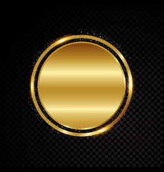 circle frame shining banner isolated on vector image