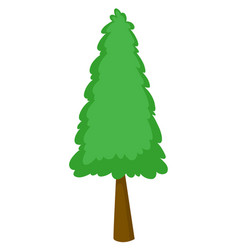 Single pine tree on white background vector