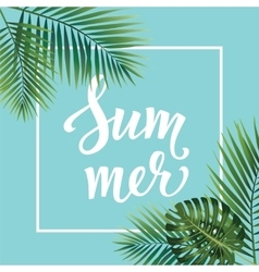 Summer poster Hand lettering text on palm leaves vector image vector image