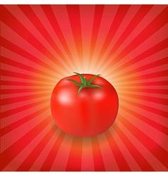 Sunburst Background With Red Tomato vector image