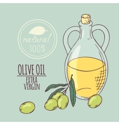 Olive oil carafe with olive branch Hand drawn vector image