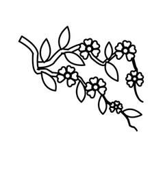 Branch sakura with flowers cherry blossom line vector