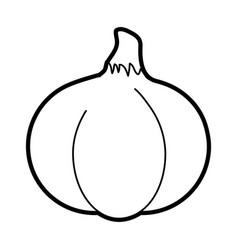 spicy garlic vegetable vector image vector image