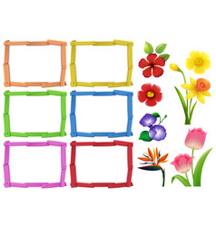 Frame template with different kinds of flowers vector