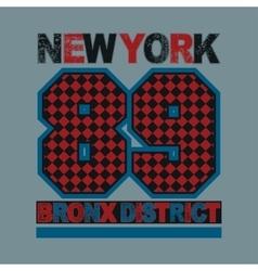 sport new york typography vector image