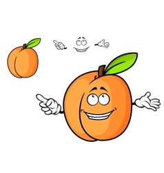 Cartoon juicy apricot fruit vector