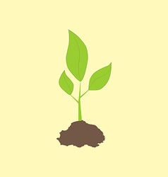 Green sprout icon vector