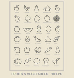 Contour icons of vegetables and fruit vector