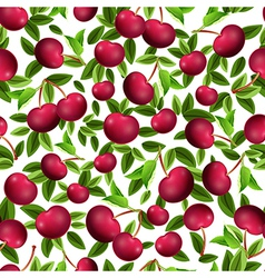 Seamless texture of cherry vector