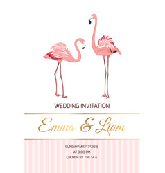 Exotic pink flamingo birds couple wedding invite vector