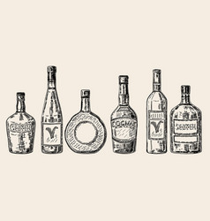 Vintage hand drawn sketch style alcohol vector