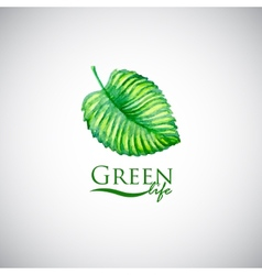 Green life watercolor leaf like logo icon vector