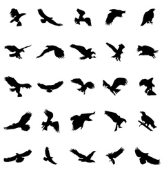 Flying birds silhouettes set vector