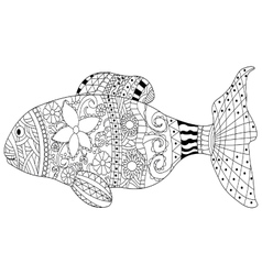 Fish Coloring book for adults vector image