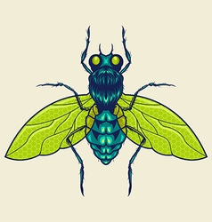 Flies mascot vector