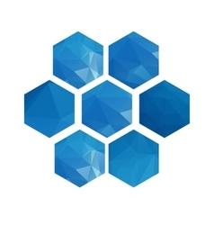 Polygonal hexagons set vector