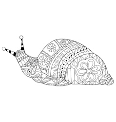 Snail coloring for adults vector image vector image