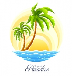 tropical palm vector image vector image