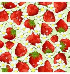 seamless texture of strawberries vector image