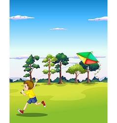 Boy and kite vector image vector image