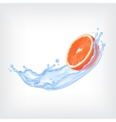Grapefruit with water vector image vector image