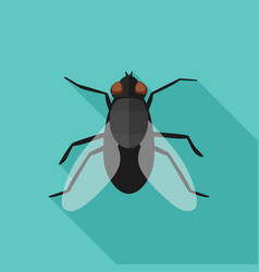 Fly flat icon with long shadow vector