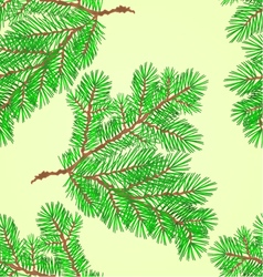 Seamless texture conifer spruce branch vector
