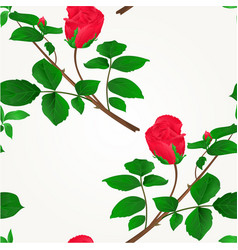 seamless texture rosebud red stem with leaves vector image vector image