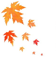 Watercolor painted orange leaves fall vector